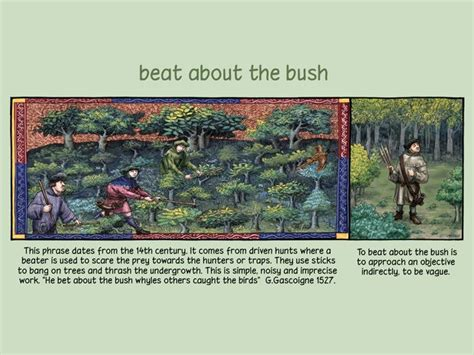 Beating About The Bush idiom beat about the bush definition learn