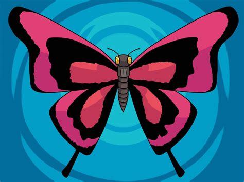 imagenes de mariposas color rosa mariposa de color rosa im 225 genes y fotos