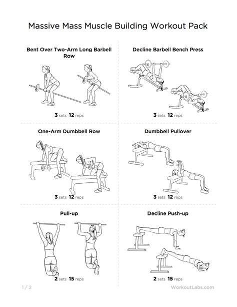 mass building workout pack for