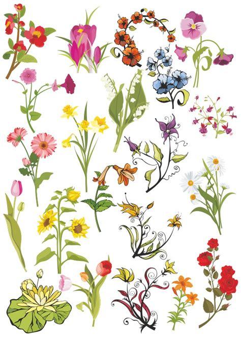 flower pattern cdr flowers vector 001 flower pattern vector download free