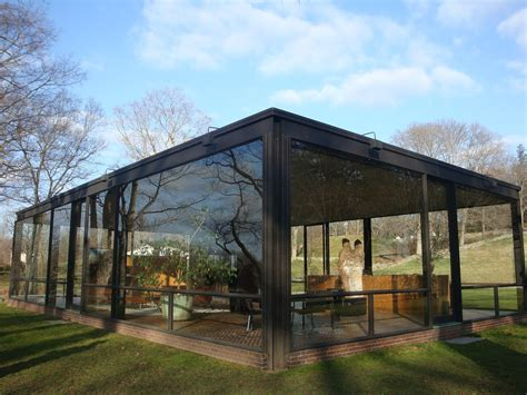 In Glass Houses by Pet A Cat Today No Throwing Stones In Glass Houses