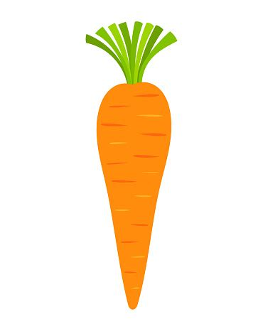 coding for carrots clipart of a carrot clip library