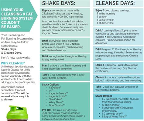 Shake Detox Plan by Isagenix Shake Day Program