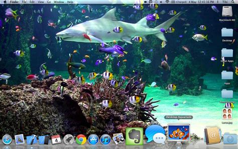 Live Wallpaper For Pc Aquarium | aquarium live wallpaper windows 10 wallpapersafari