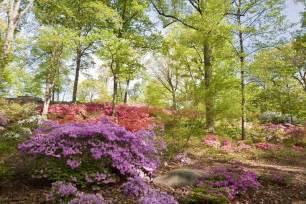 Botanical Garden Nyc Best Botanical Garden Winners 2016 10best Readers Choice Travel Awards