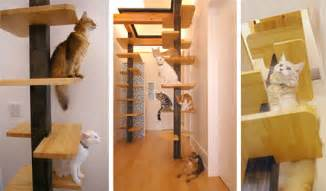 Cat Friendly Home Design Another Amazing Cat Friendly House Design From Japan