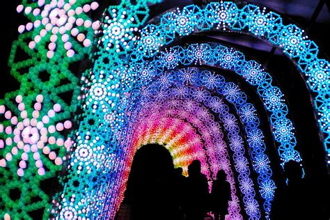 Light In Japanese by Winter Light Festival Nabano No Sato Japan 9 The Golden