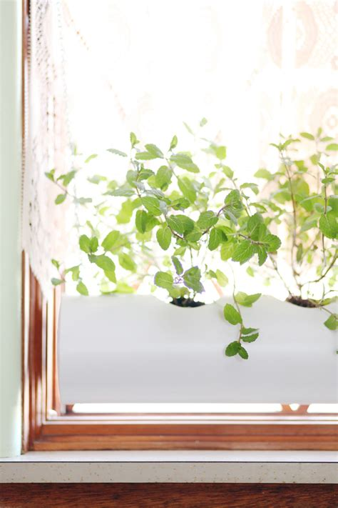window sill planter indoor make a floating pvc window planter a beautiful mess
