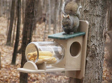 how to make a squirrel feeder ebay