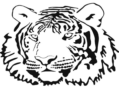 tiger face coloring pages www pixshark com images