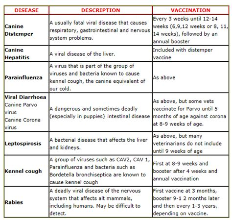 printable vaccination schedule for dogs rabies vaccine schedule