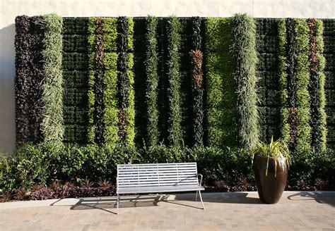 fashion valley mall living wall greenroofscom