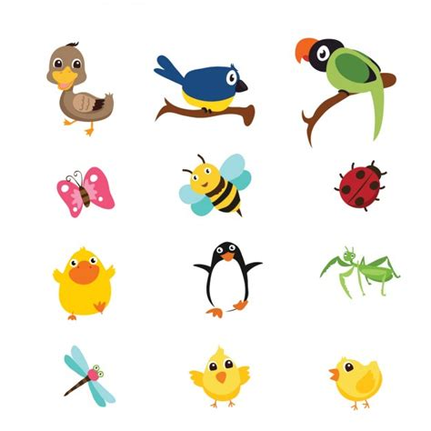 imagenes de insectos vectores birds and insects collection vector free download