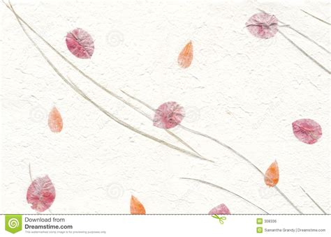 How To Make Handmade Paper With Flower Petals - texture series white paper with flowers stock photo