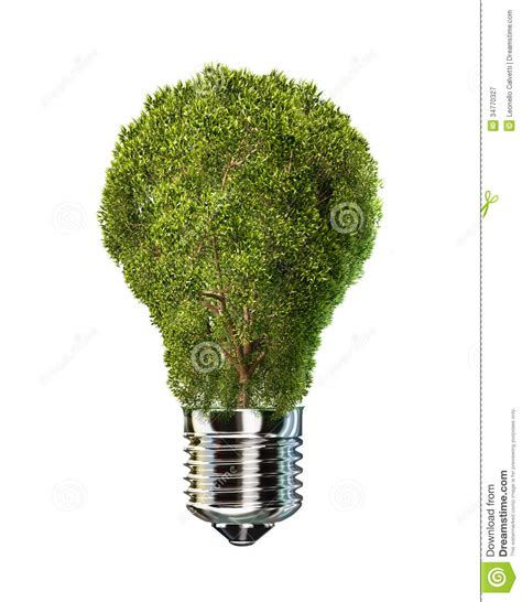 light bulb with tree in place of glass stock illustration