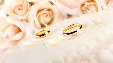 Wedding Background wallpaper   1920x1200   #73761