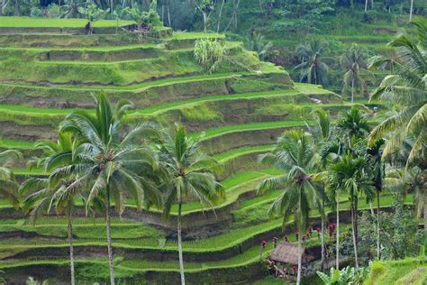 top tourist attractions  indonesia   map