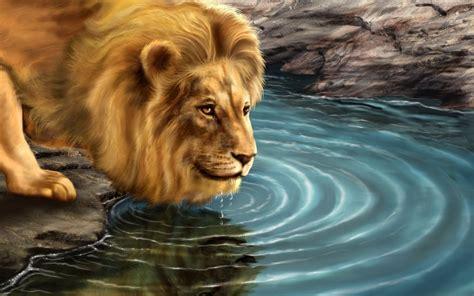 imagenes de leones bravos cuento el le 243 n que vio su rostro en el agua carmen guerra