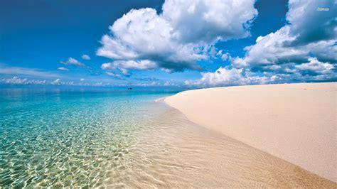 nature world best sea beach wallpaper safari en tanzanie et d 233 couverte de l 238 le de zanzibar