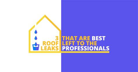To Leave To The Professionals by 3 Roof Leaks To Leave To The Professionals
