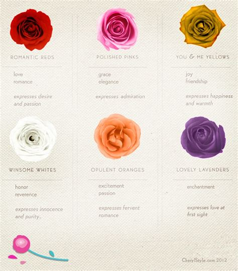 roses colors meaning colors and their meaning