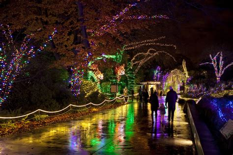 where to see holiday light displays in seattle bellevue