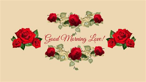 wallpaper flower morning good morning wishes wallpapers