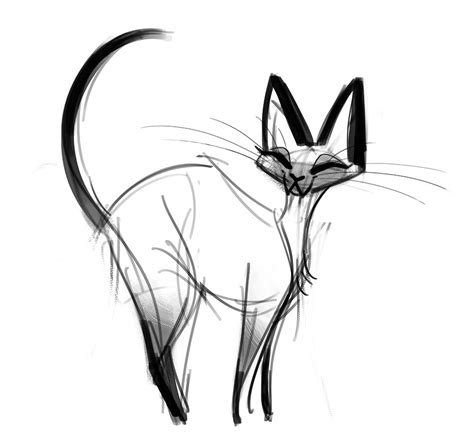 doodle cat drawing daily cat drawings 305 siamese cat sketch