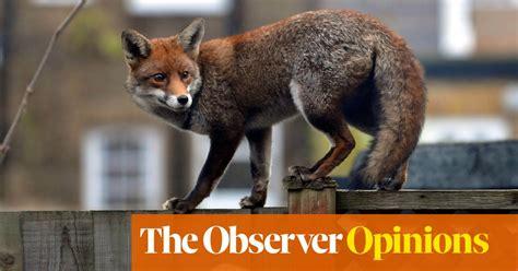 jolyon maugham qc   hero     beat  fox