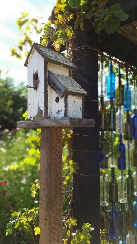 images nature outdoor bird house wildlife