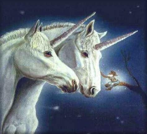 ver imagenes unicornios viaje de amor y espiritualidad los unicornios