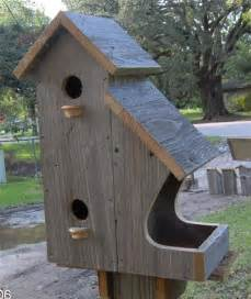large bird houses large outdoor bird houses foter