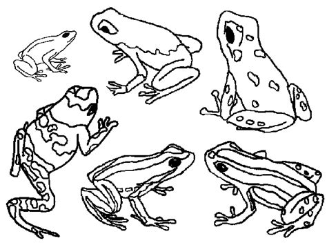 Frog Coloring Pages Coloringpagesabc Com Frog Printable Coloring Pages