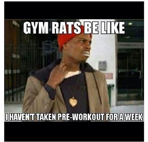 gym rat quotes quotesgram