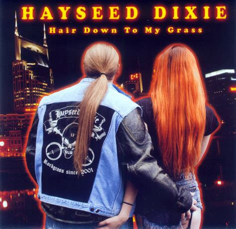 Hayseed Dixie Comfortably Numb Gtter Des Rockgrass