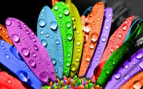colorful rainbow paint texture paints background photo color rainbow paint texture
