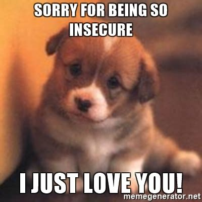 Memes About Being Sorry - sorry for being so insecure i just love you cute puppy