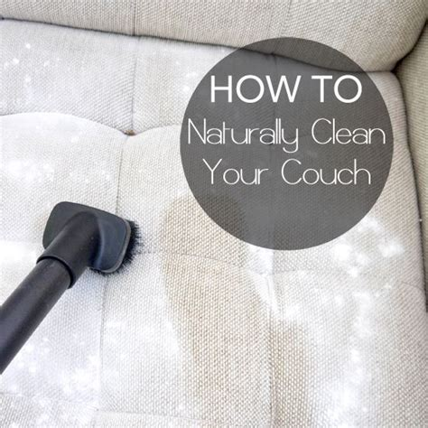 how to clean vomit off couch 17 best ideas about mattress couch on pinterest twin