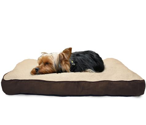 pet pillow bed furhaven pet nap deluxe pillow pet bed for dogs ebay