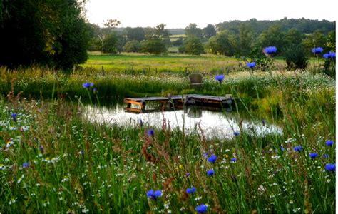 giardini acquatici il giardino delle naiadi bulbose per giardini acquatici