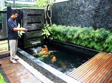 gambar kolam ikan minimalis kolam ikan koi kolam ikan hias  taman kolam ikan
