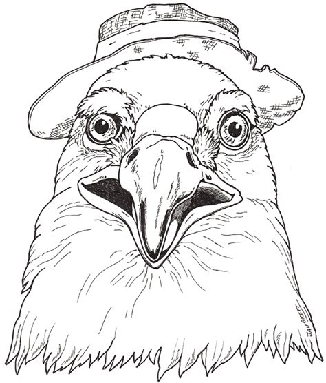 eagle mask coloring page pin eagle mask colouring pages cake on pinterest