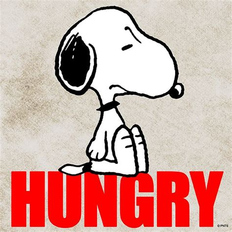 snoopy decke 643 best images about peanuts shareables on