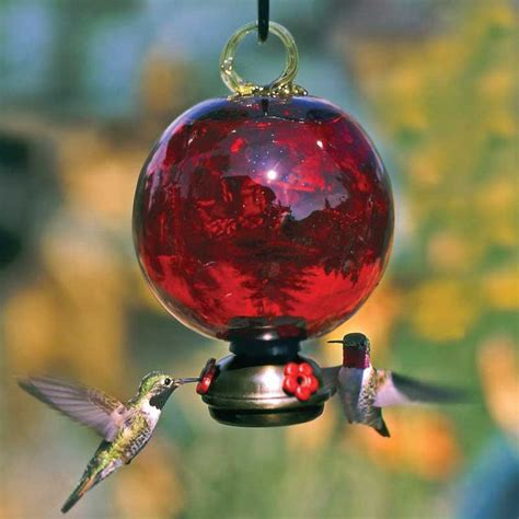 133 best quot bird feeder s quot food on the go images on