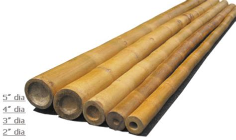 Diy Home Wall Decor by Bamboo Poles Wholesale Cane Sticks Solid Bamboo Iron