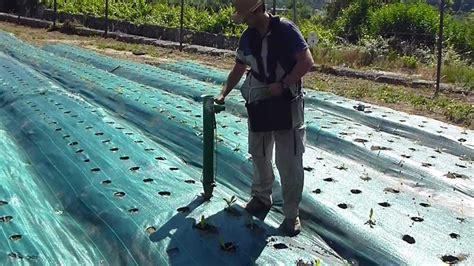 plantadores de hortalizas plantador manual youtube