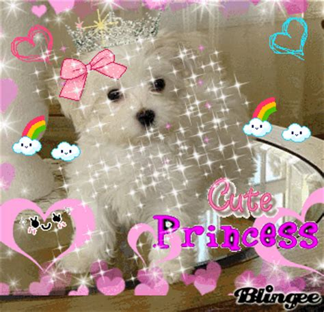 puppy princess princess puppy picture 109259085 blingee
