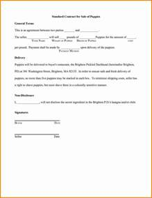 Co Promotion Agreement Template promotion agreement template simple services contract