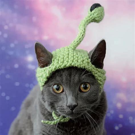 alien cat knit hat favecrafts