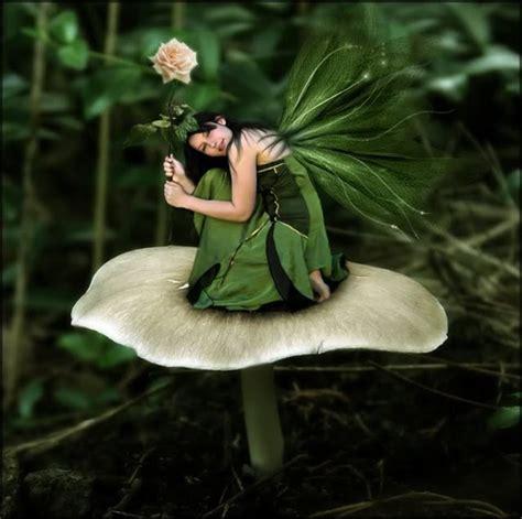 fairies and elves elves fairies pixies pinterest